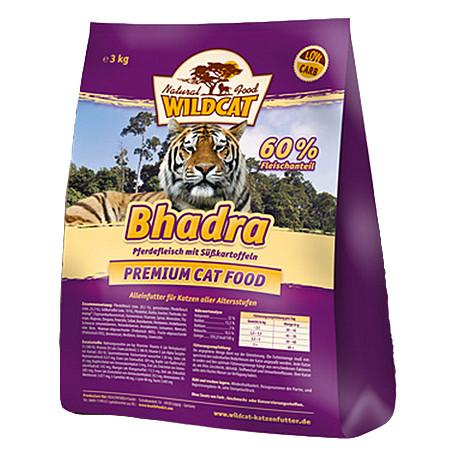 Wildcat Bhadra Adult