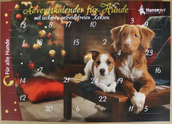 Adventskalender für Hunde zur Weihnachtszeit